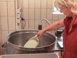 biestmelk kalveren